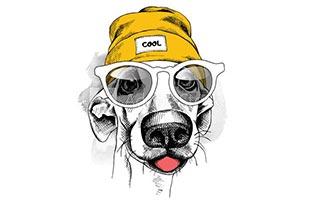 собака лайн арт