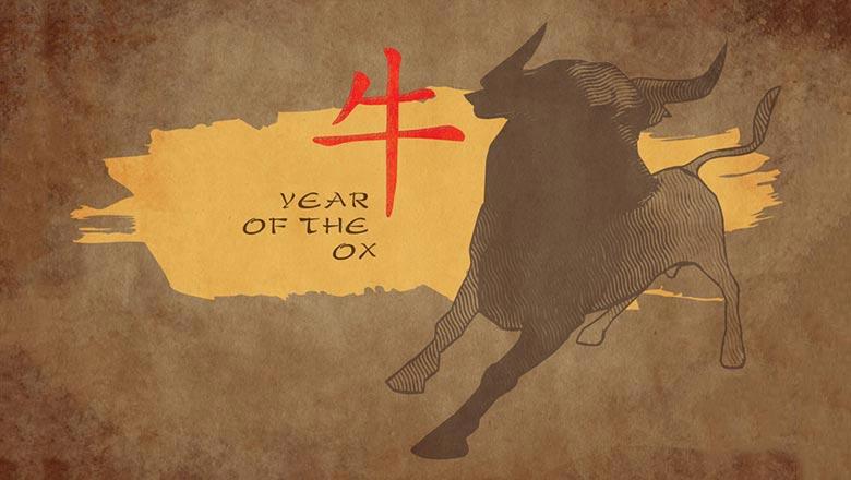 гороскоп быков на 2019