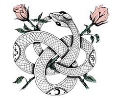 змея и розы