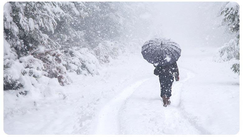снег и зонт