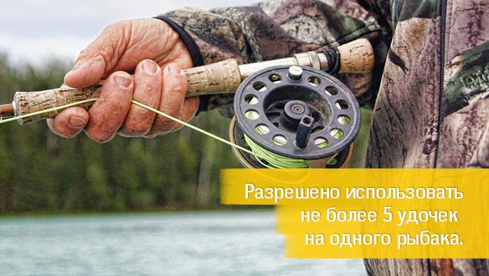не более 5 удочек на рыбака