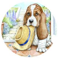 собака с шляпой