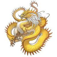 жёлтый дракон