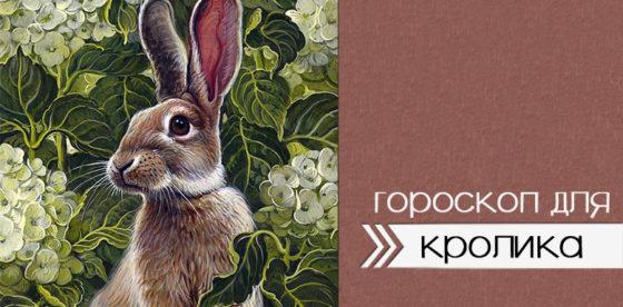 гороскоп для кролика 2020
