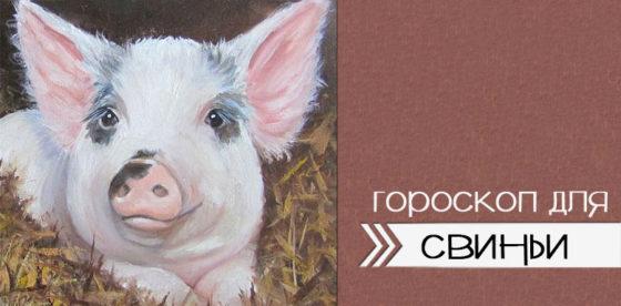 гороскоп для свиньи на 2020 год