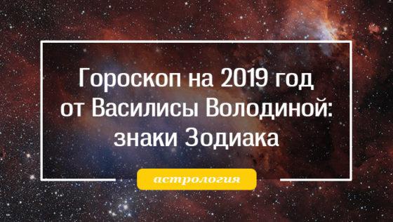 гороскоп на 2019 от василисы володиной