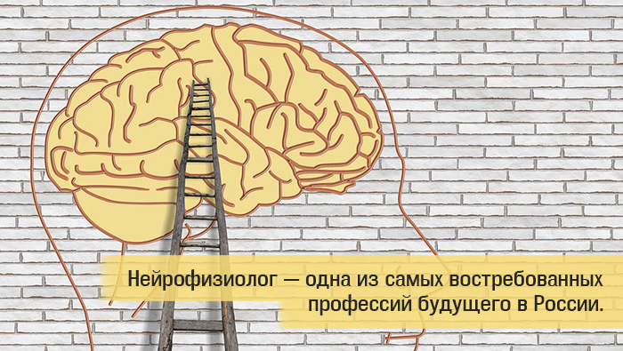 изучение мозга